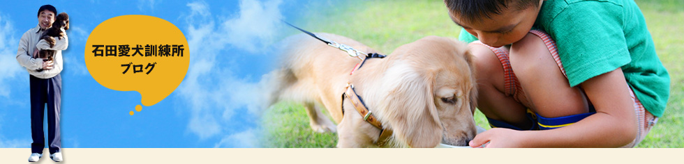 石田愛犬訓練所ブログ